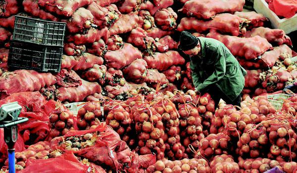 全力保障蔬菜供应
